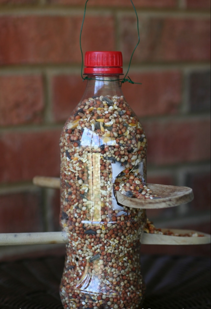 plastic bottle bird feeder