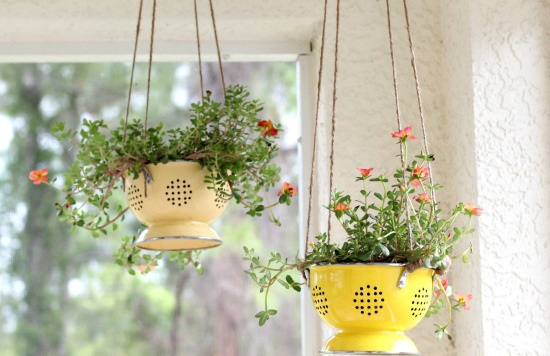 Colanders to Planters