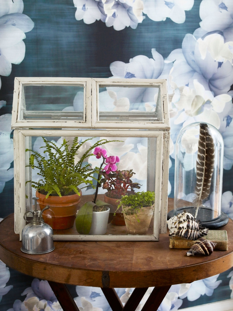 How To Repurpose Old Picture Frames to Create a Charming Miniature Terrarium