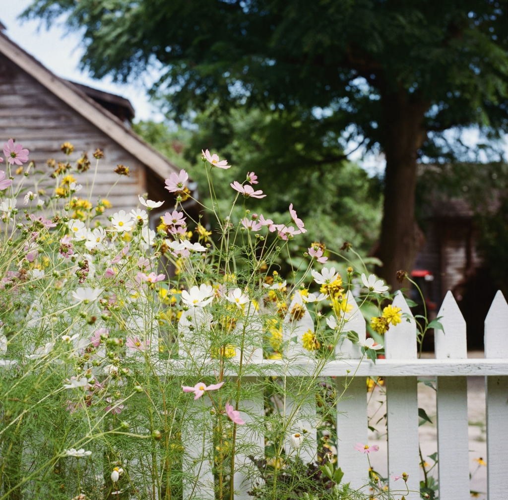 Build a white picket fence