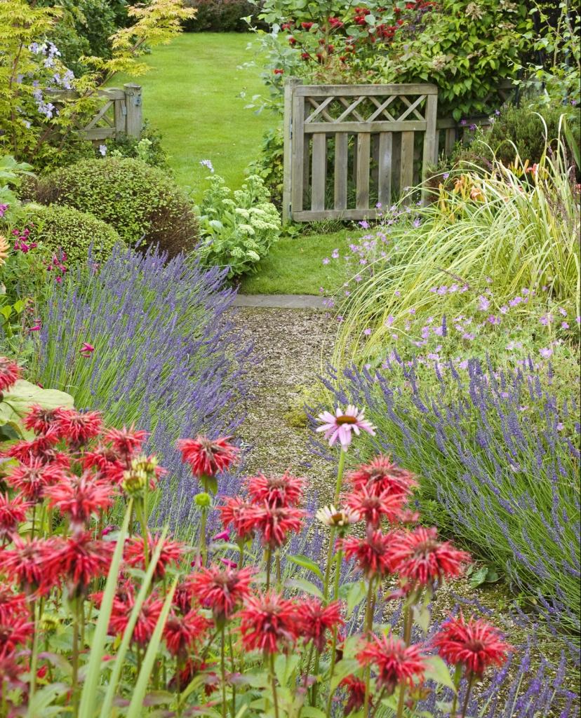 Create a winding garden path