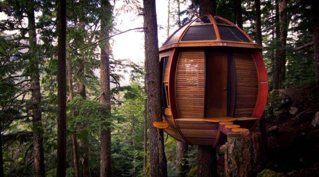 #3 Hemloft Tree House