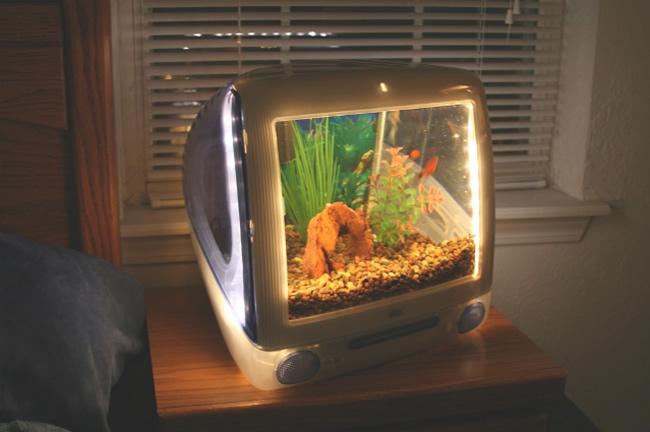 a broken computer monitor for an aquarium