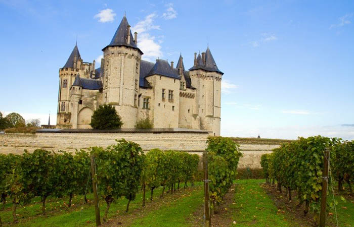 Tasting wine in the castles of the Loire Valley