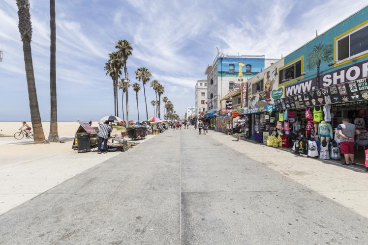 Stroll Along Venice Beach