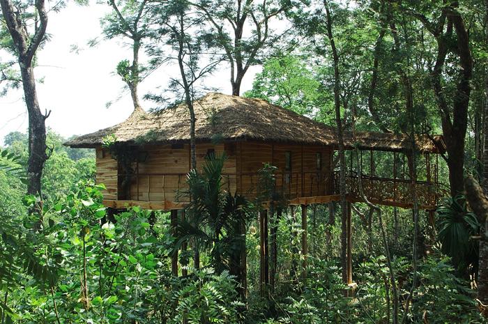 Tranquil Resort, Wayanad, Kerala, India
