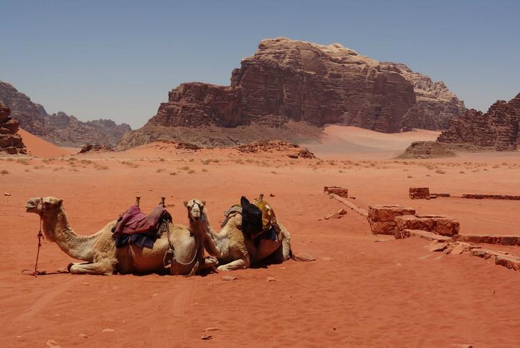 Wadi Rum Protected Area, Jordan