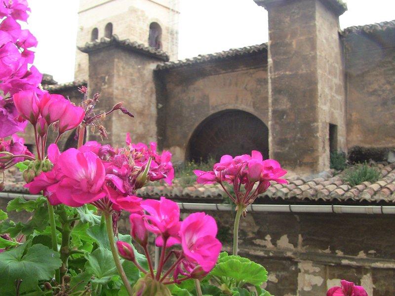 Valencia Mindfulness Retreat – Valencia, Spain