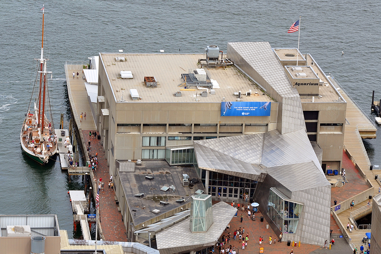New England Aquarium
