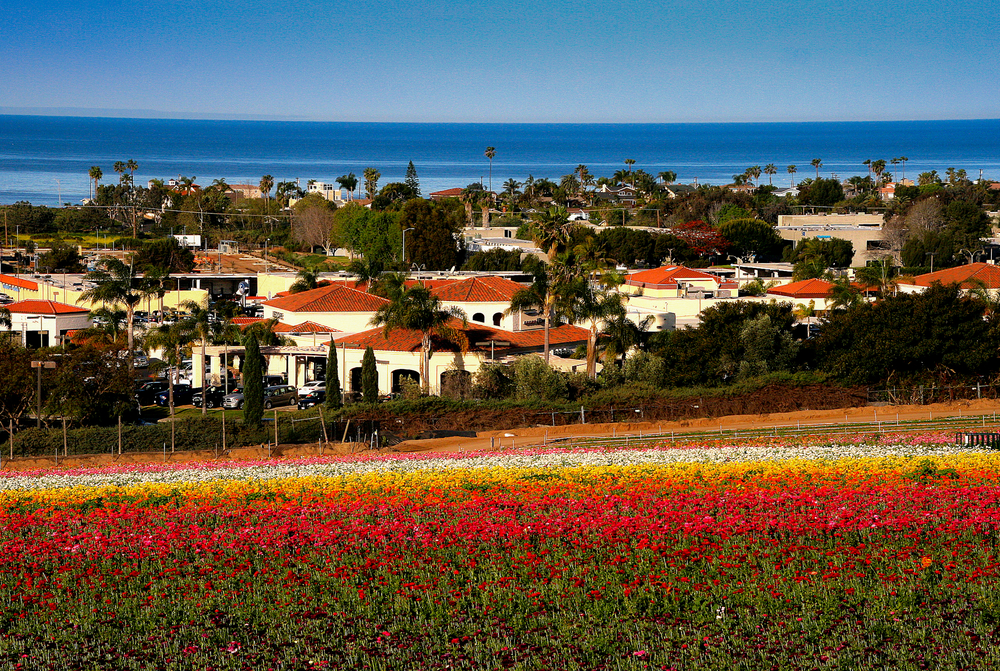 Carlsbad is One Of The Best Day Trips To Take In The US