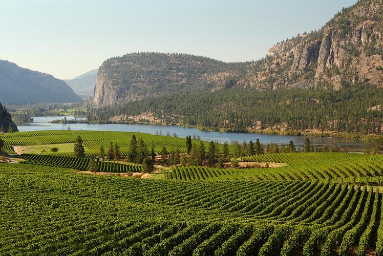 Okanagan Valley, British Columbia Canada