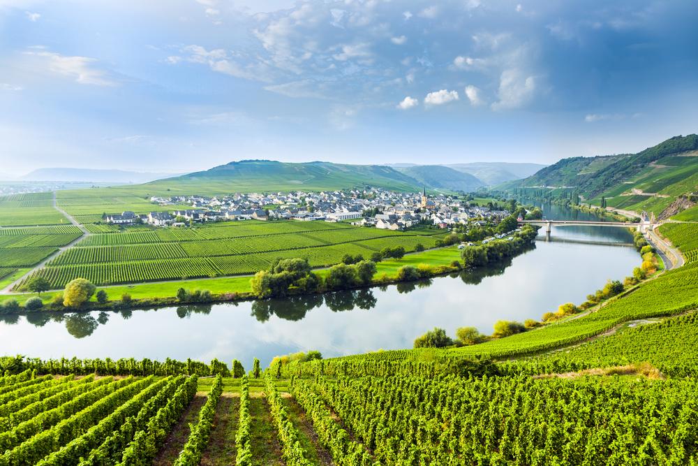 Mosel, Germany vineyard