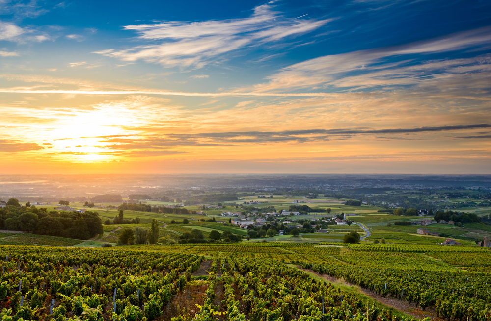 The Rhone Valley, France wine