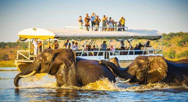 Duba in Botswana