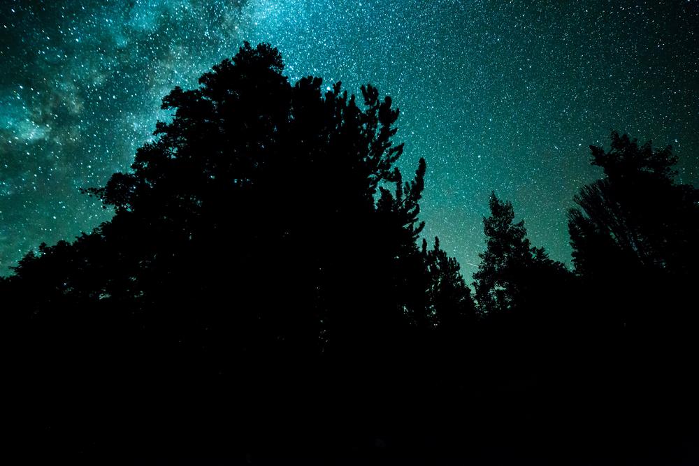 stargazing, Nevada