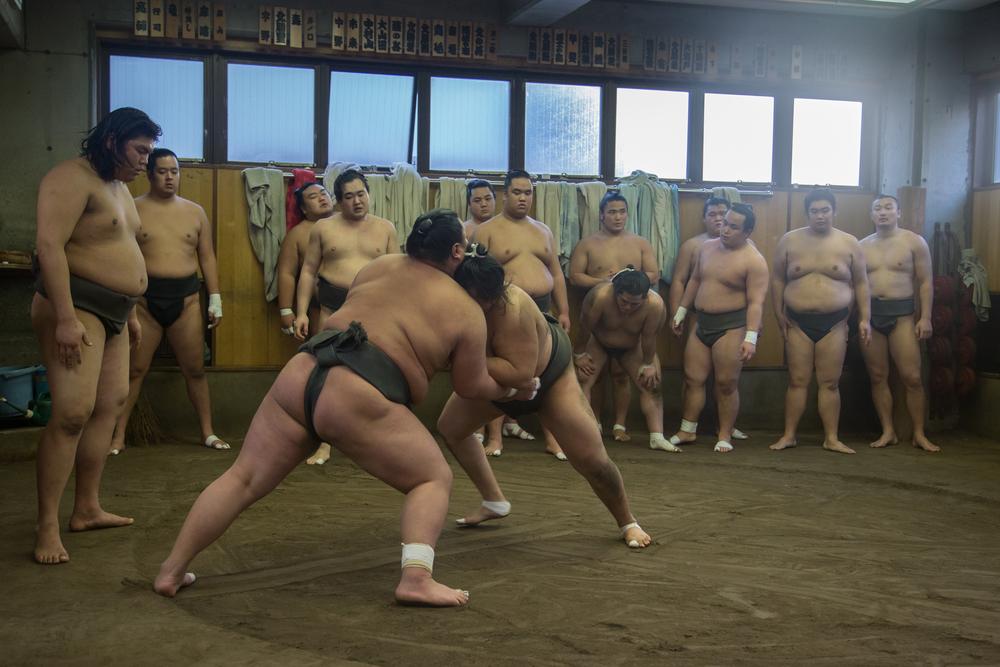 Watch Sumo Wrestlers Train