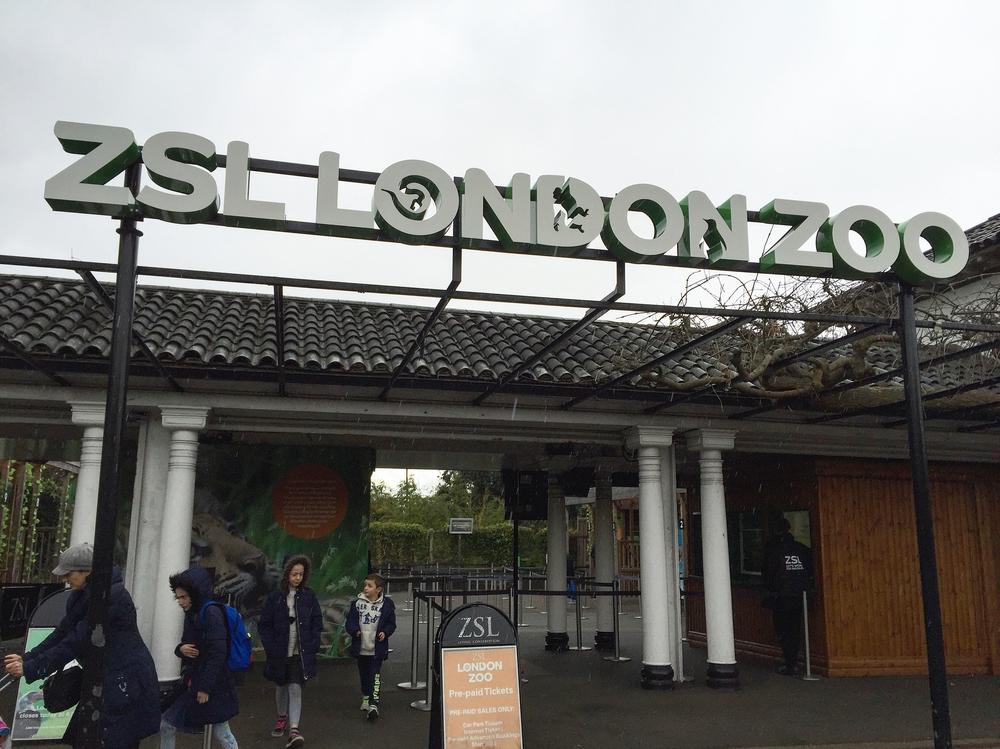 London Zoo, London