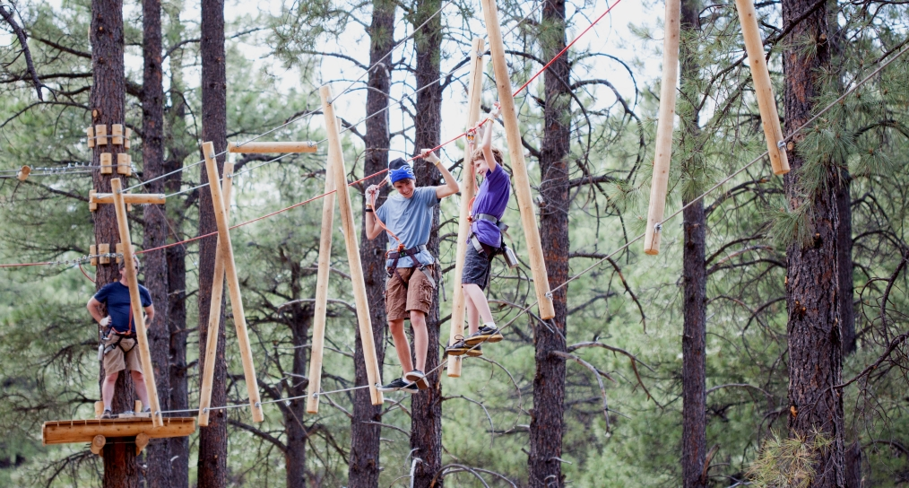 Tackle a Treetop Obstacle Course