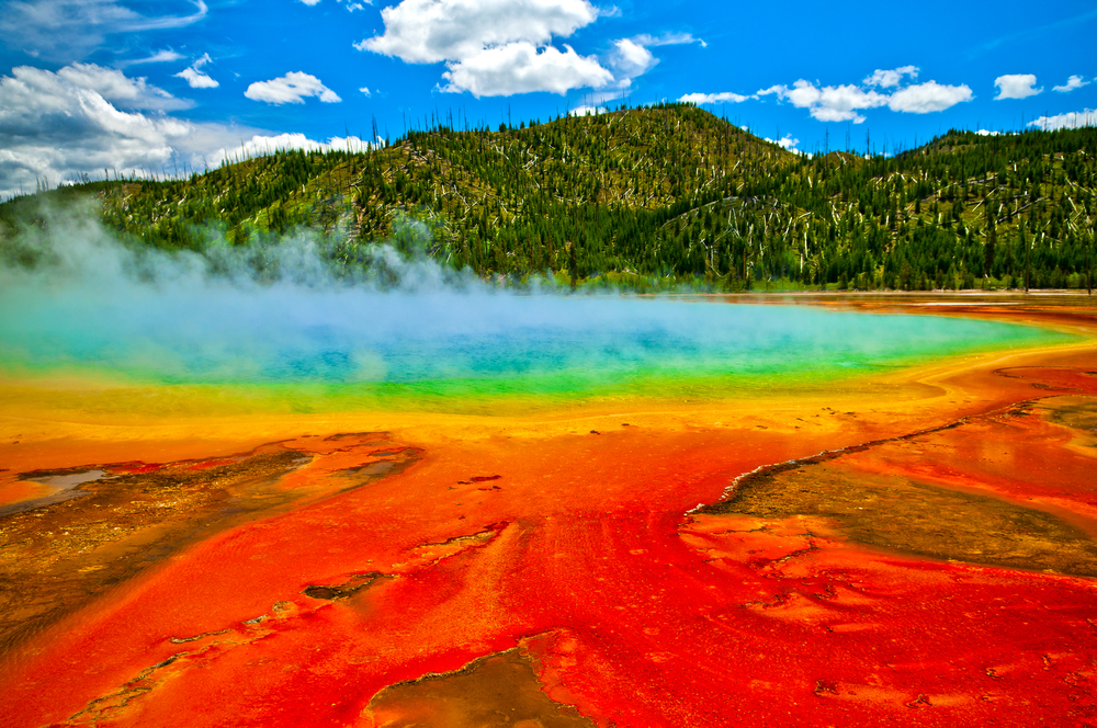 #1 Yellowstone National Park