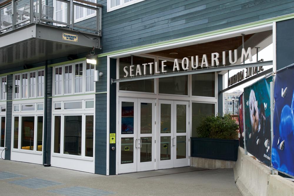 #8 Seattle Aquarium