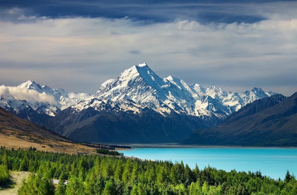 #4 New Zealand