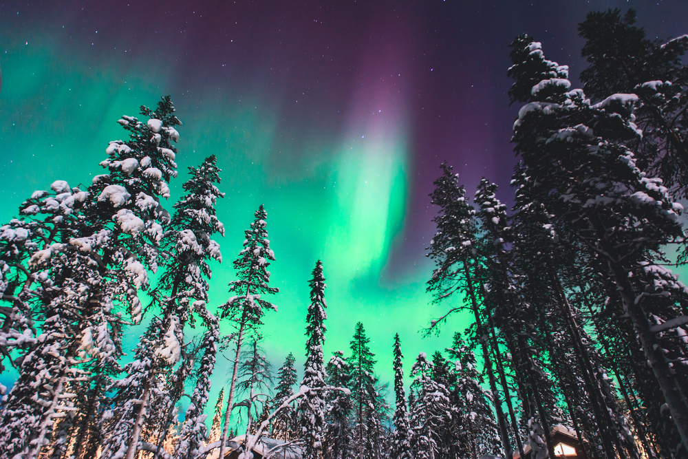 #4 The Northern Lights, Lapland