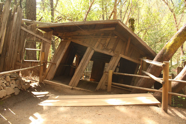 #1 The Oregon Vortex